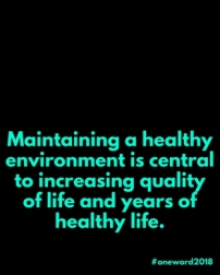 Maintaining a healthy environment is central to increasing quality of life and years of healthy life. (1).jpg